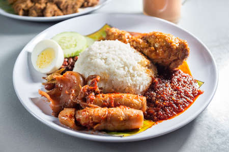 Delicious  Nasi lemak with chicken and sotong, Asian Food Фото со стока