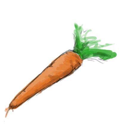 eenvoudige wortel illustratie Stockfoto