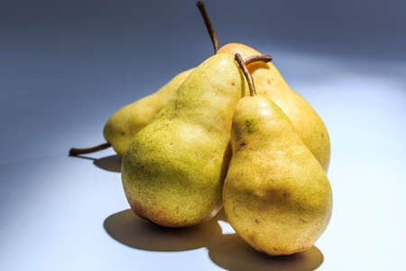 picked: Fresh Picked Pears on bright background