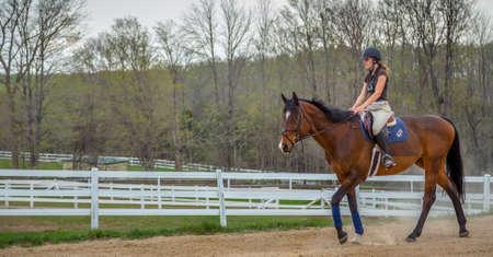 Woman riding on a Horse Banco de Imagens