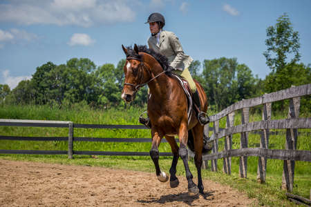 equitation: woman equestrian riding on a horse Stock Photo