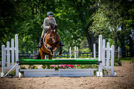 equestrian riding in hunter and jumper ring Stock Photo