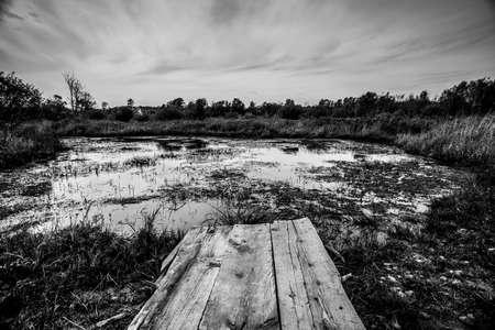 litty jetty on pond for scenic photos 版權商用圖片