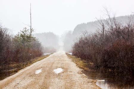precipitacion: Camino escénico al aire libre Foto de archivo