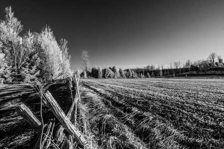 ir: scenic view of rural countryside