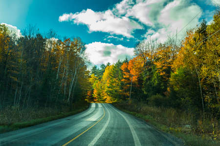 the view down a scenic country roadway in autumn landscape 版權商用圖片