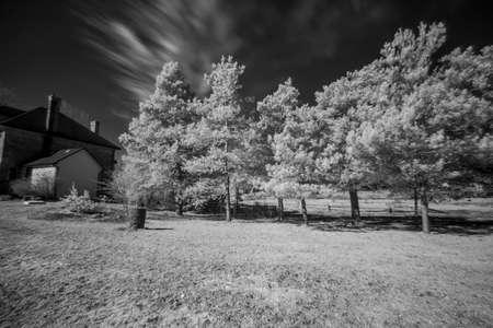 Artistic Infrared Landscape View Stok Fotoğraf
