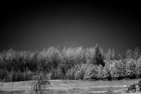 infrared: Artistic Infrared Landscape View Stock Photo
