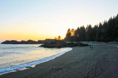 Bc 州の太平洋沿岸、カナダ バンクーバー島