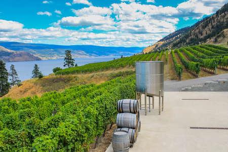 Scenic view of Okanagan Valley, BC 免版税图像