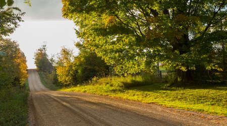 가을 풍경에 경치 좋은 나라 도로 아래로보기 스톡 콘텐츠