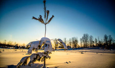 sub zero: Rural Winter Landscape View