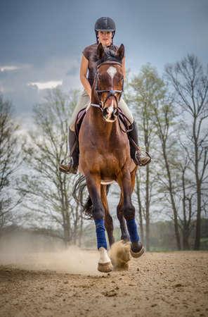 女性ハンター ジャンパー リングで馬の練習をして 写真素材
