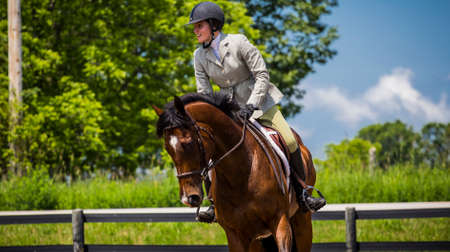jumper: equestrian riding in hunter and jumper ring Stock Photo