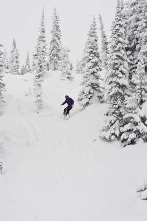 deep powder snow: snowboarder in winter view