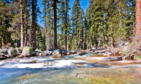 sequoia national park: water flow in sequoia national park, california