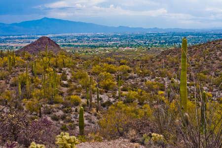米国アリゾナ州ツーソンを見下ろす