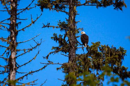 scenics: Okanagan Scenics Stock Photo