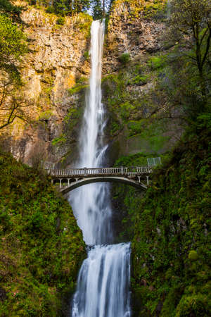 scenic view of multnomah falls in oregon Imagens - 60866211