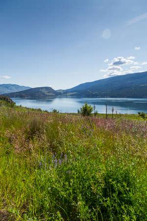 Overlooking scenic mountain lake