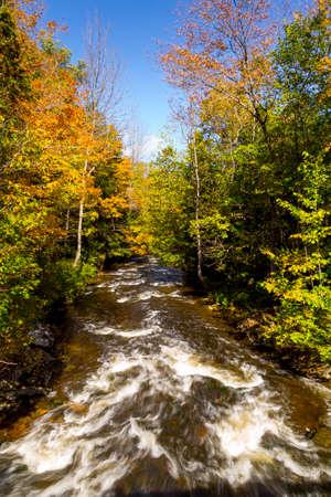 autumn view of creek 免版税图像