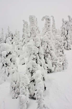 caked: ski resort views of the landscape in winter Stock Photo