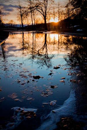 冬の小さな池の風光明媚な反射