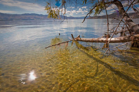 夏の晴れた日の湖オカナガン ビュー