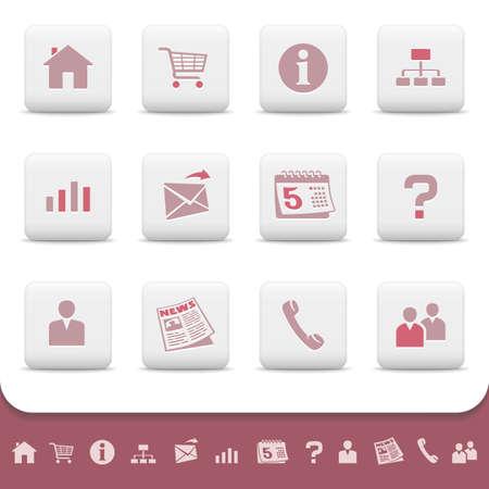 Iconos web profesionales en los botones blancos