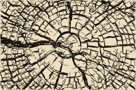 wooden circle: Old cracked wooden stump texture vector illustration