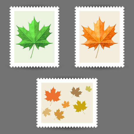 postage stamps: Vector postage stamps with maple leaf icons