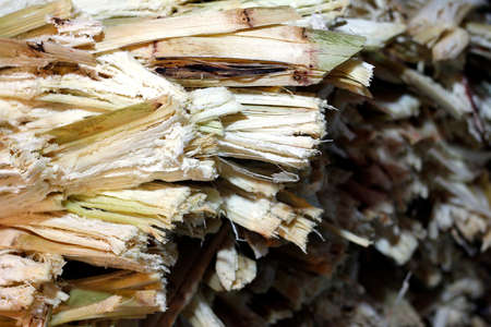 residue from sugar cane juice and rest from the juice of sweet water was removed, waste of sugarcane residue from sugar cane make drink, residual sugar cane residue in market night (selective focus)