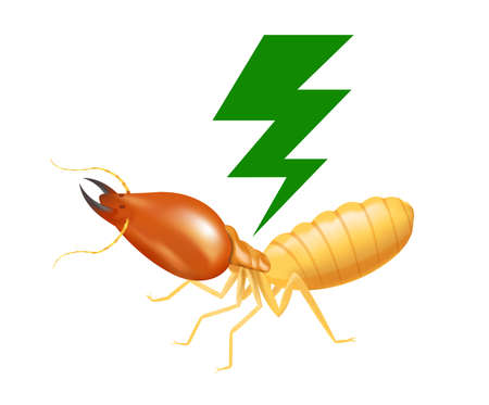termite with thunder symbol green isolated on white background, logo insects termite and thunder flash, termite thunder symbol for flat icons info graphic, termites icon for chemical spray products