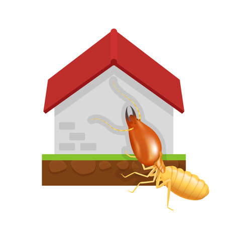 termite and cement house isolated on white background, icon insect species termite ant eaten cement home decay, symbol damaged cement house form termite eaten, cartoon termite clip art and home