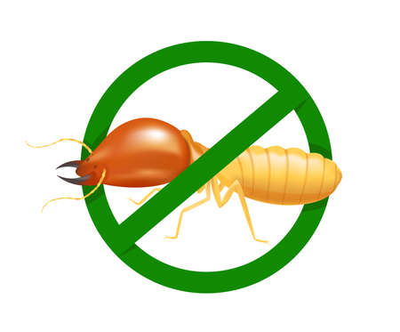 termite in prohibited green circle sign isolated on white background, logo insects termite, termite prohibition symbol for flat icons info graphic, illustration termites icon chemical spray products Logo