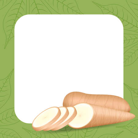 banner frame of cassava fresh for copy space, cassava cut slice for tapioca flour industry or ethanol, pile yucca cassava tuber on frame, raw manioc cassava on template banner green background empty