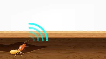 termite nest in wood and sound wave symbol, termites destroy table, door, and window in the wooden house, termites bite the wood wall, termite burrows, termite hole in wooden furniture for copy space