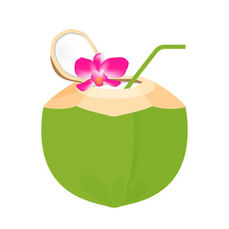 coconut juice fresh with plumeria flower and straw tube nature, coconut green young half cut for healthy menu fruit juice, coconut summer fruit concept, clip art green coconut juicy isolated on white