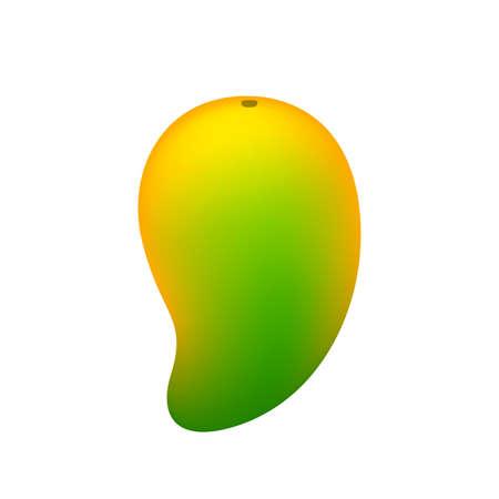 mango yellow green fruit simple isolated on white background, ripe or raw mango cartoon for clip art, illustration mango for icon