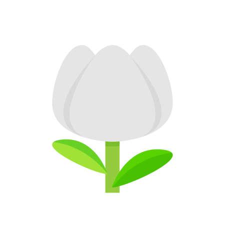 tulip flower white grey simple isolated on white background, tulips white cartoon for clip art, illustration tulip flower