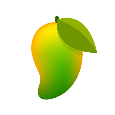 mango yellow green fruit simple isolated on white background
