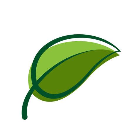 Leaf graphic, Leaf shape, Leaf symbol isolated on white