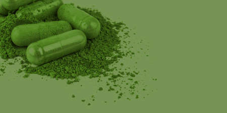 andrographis herb capsule in green color for banner background, andrographolide herbal capsule green powder for banner, paniculata pill capsule herb and copy space 免版税图像