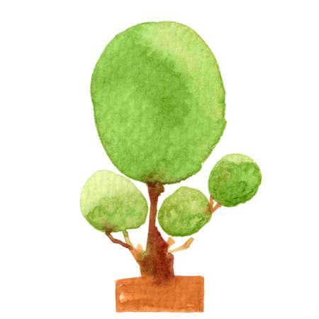 tree watercolor hand draw for kids art, illustration tree shape clip art media, children hand draw concept