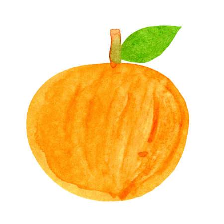 citrus illustration, orange fruit watercolor kids art, orange clip art media, children hand draw concept 免版税图像