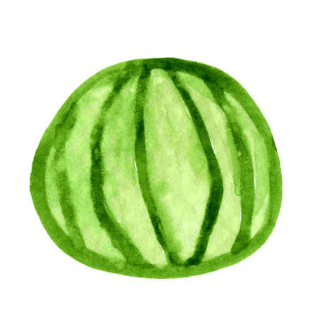 watermelon watercolor kids art, watermelon clip art media, children hand draw concept