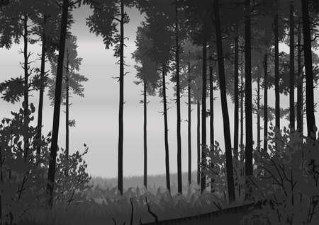 coniferous forest: Ilustración del paisaje de bosque de coníferas en colores planos Vectores
