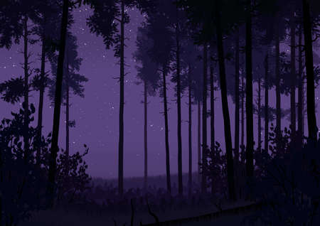 Illustration of coniferous forest landscape in flat colors