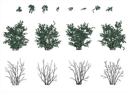 bushes: Set of bushes and leaves in flat colors Illustration