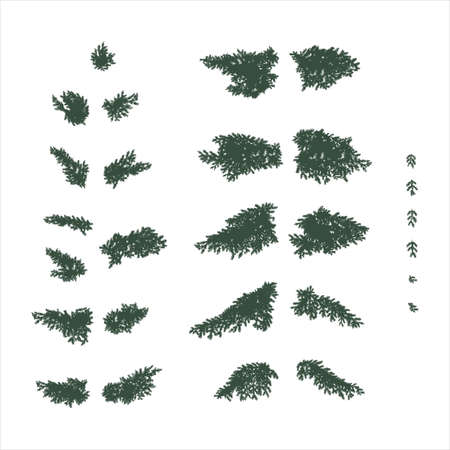 Set of coniferous fir branches in flat colors